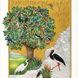 Barbara Wolff, Among the Branches They Sing from You Renew the Face of the Earth: Psalm 104. The Morgan Library & Museum,