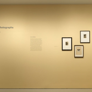 """""""In the Studio: Photographs"""" Installation view"""
