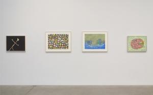 """Installation View, """"Thomas Nozkowski"""" Pace Gallery"""