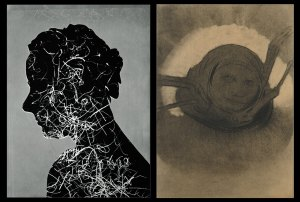 Left: Emmet Gowin (American, b. 1941), Edith in Panama, Flight Inside, 2003. Unique gold toned salt print on Twin Rocker handmade paper. Right: Odilon Redon (French, 1840-1916), The Spider, 1902. Charcoal and black chalk.
