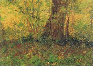Vincent Van Gogh, Undergrowth, oil on canvas, 1887